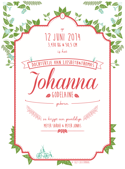 geboortekaartje Johanna